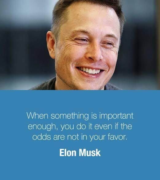 Elon Musk quote When something is important enough, you do it even if the odds are not in your f