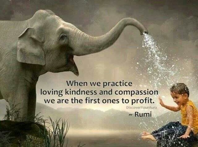 Compassion quote When we practice loving kindness and compassion we are the first ones to profit.
