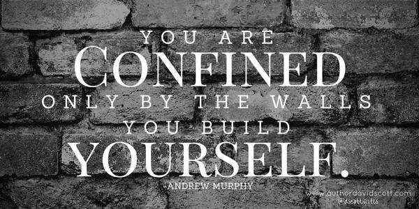 Occupy wall street quote You are confined only by the walls you build yourself