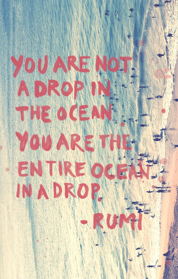 Ocean quote You are not a drop in the ocean. You are the entire ocean in a drop.