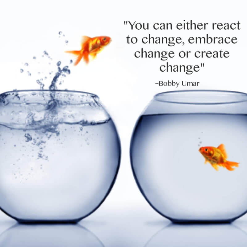 Inspirational change quote You can either react or change, embrace the change or create change.