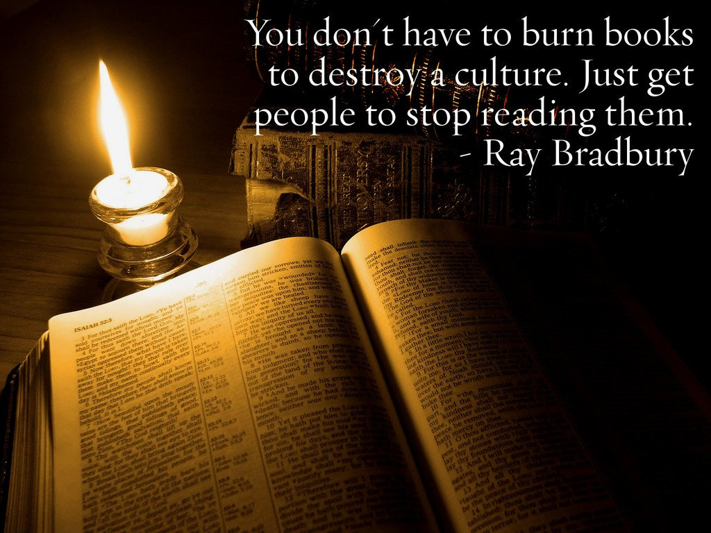You dont have to burn books to destroy a culture. Just get people to stop reading them. - Ray Bradbury