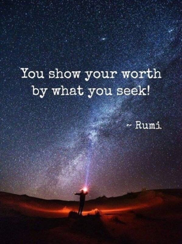 Interested quote You show you worth by what you seek.