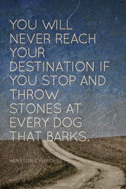 Reach quote You will never reach your destination if you stop and throw stones at every dog